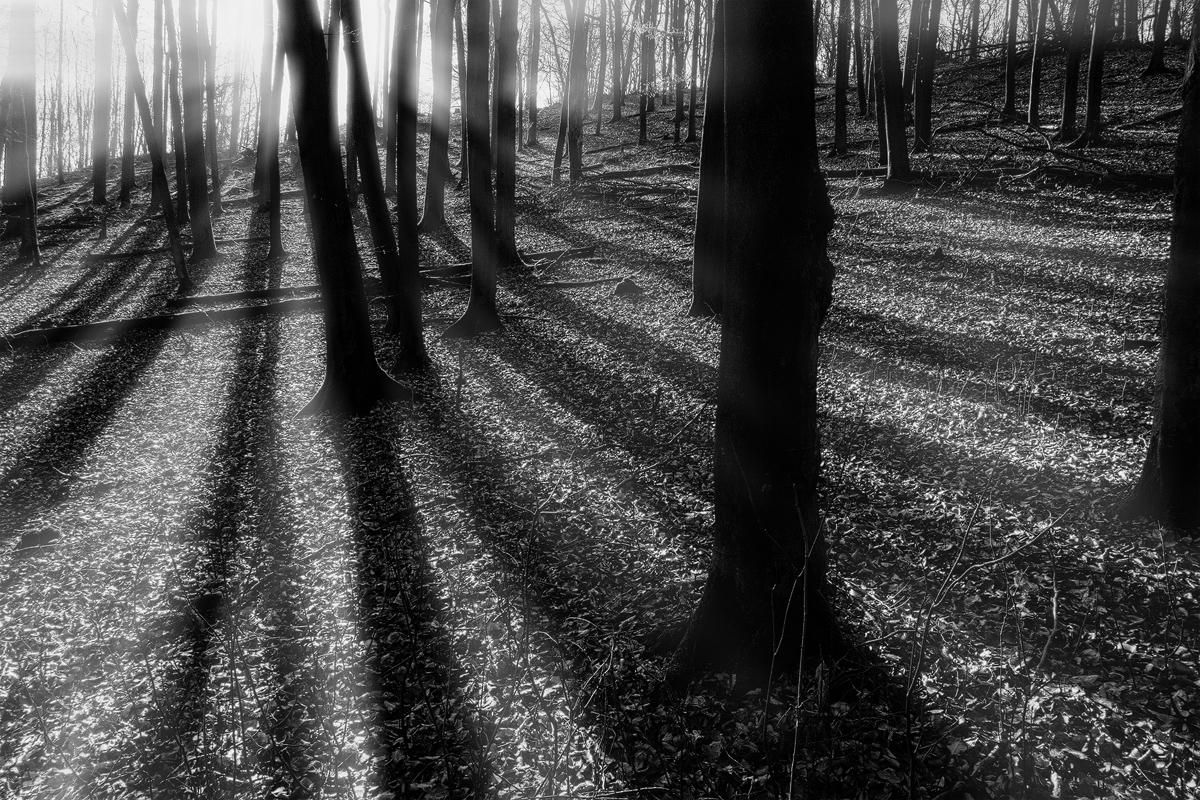 Wulf Kobusch Landschaftsfotografie
