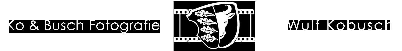 logo_kobusch_website3